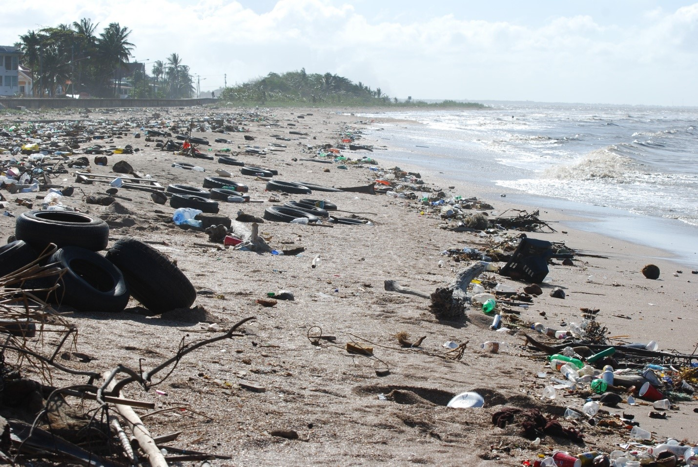 Littering a big cause for marine pollution